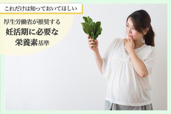 栄養素基準