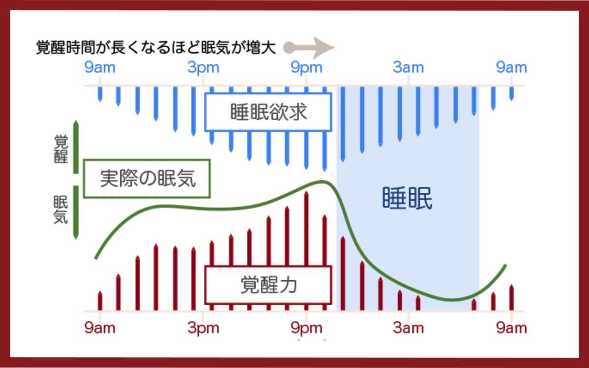 睡眠サプリ快眠サプリ眠りのメカニスズム(厚生労働省)