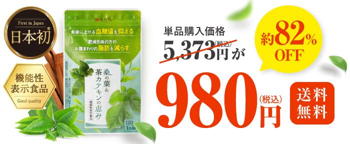 桑の葉&茶カテキンの恵みの初回価格がお得